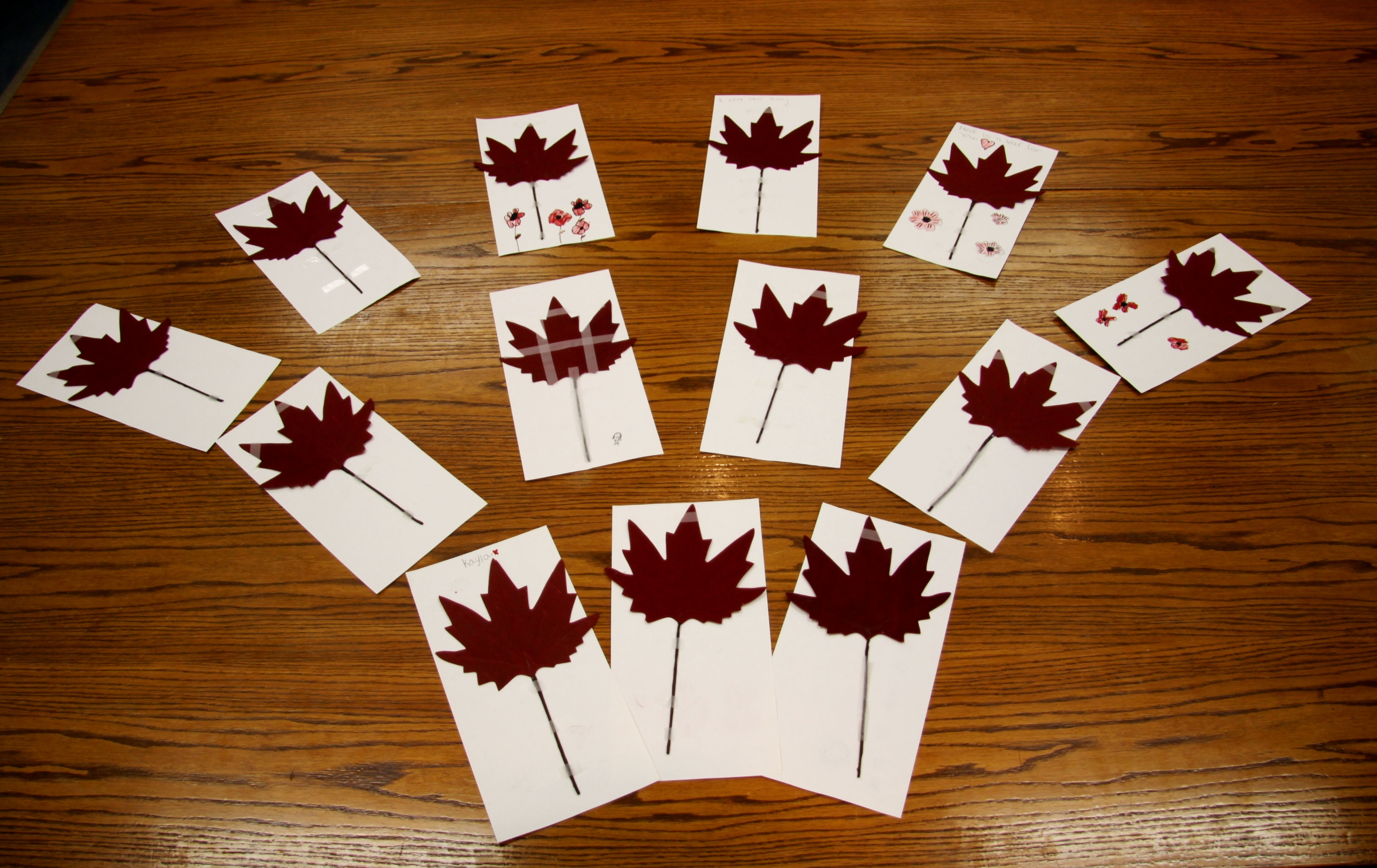 Brownie Maple Leaf Cards